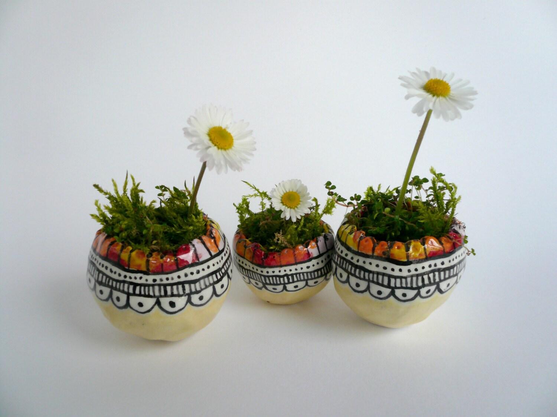 Contenitori Per Piante : Piccoli contenitori per piante vasi succulente