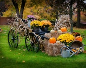 Fall Foliage Cart