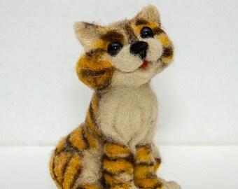 Foxy-red cat