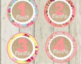 Baby Monthly Onsie Stickers, Baby's First Year, Baby Month Iron On Onsie Stickers, Baby's First Year Birthday Banner, Vintage Baby Month