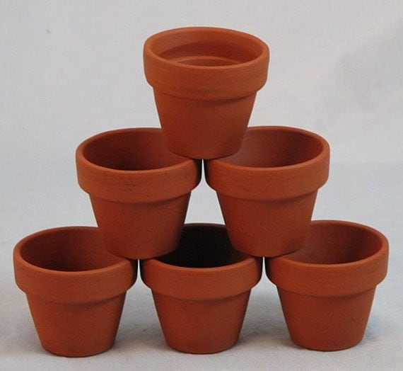 10 3 x 2 5 mini clay pots great for plants and for Small clay flower pots