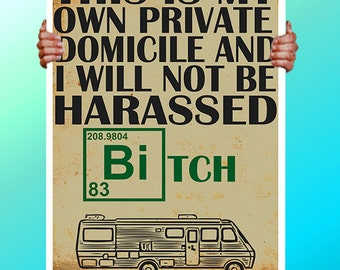 Breaking Bad Jesse Pinkman Private Domeicle Bitch - Art Print / Poster / Cool Art - Any Size