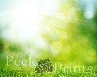 5ft.x5ft. Sunny Grass Vinyl  Photography Backdrop
