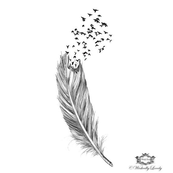 Mouche gratuite les plumes et les oiseaux diaboliquement - Signification des plumes d oiseaux ...