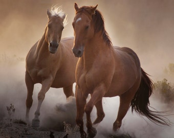 Strength-Horse Gallery Wrap Canvas