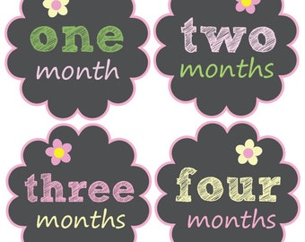 Baby Month Stickers, Monthly Baby Stickers, Bodysuit Stickers, Monthly Milestone Stickers, Baby Monthly Stickers, Baby Belly Stickers