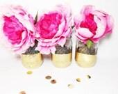 Gold Mason Jars, Gold Dipped Small Mouth Mason Jars - Set of 3