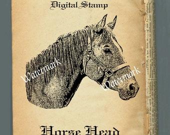 Digital Stamp Clip Art, Horse Head Image PNG Instant Download