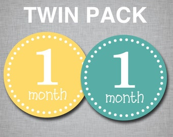 Baby Monthly Stickers Milestone Monthly Stickers Twins Stickers Month by Month [T001]