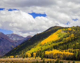 Fall in Telluride, Colorado- Landscape Photograph