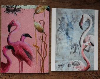 Lot de deux cartes postales.Les flamands