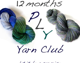 hand painted yarn club - 12 month membership - customizable - by pancake and lulu
