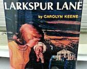 Nancy Drew Password to Larkspur Lane vintage book cover refrigerator magnet