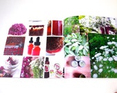 The Good4You Herbals Yearbook 2012