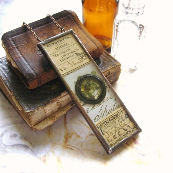 bryophyta antique microscope slide pendant hand soldered
