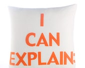 """I CAN EXPLAIN - recycled felt applique pillow 16""""x 16"""" - more colors available"""