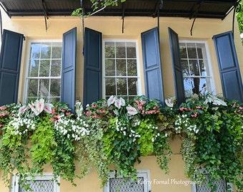 Charleston Window Box Photography, Charleston Prints, Charleston French  Quarter Window Box, Charleston Window