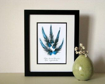 """Feather print, 8"""" x 10"""" matted, Blue Laced Rooster feathers, feather art print, unique art print, no. 005"""