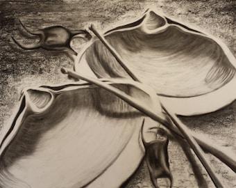 Clam Shells and Bird Bones III - Original Charcoal Drawing