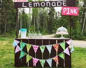 Banner Bunting, Fabric Pennant Flags, Shabby Chic Pink, Lime, Aqua, Chevron, Polka Dot, Vintage Style Flowers, Photo Prop, Birthday Party