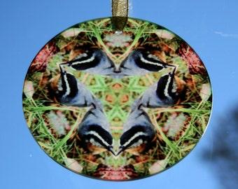 Glass Suncatcher Nuthatch Bird Mandala Boho Chic Sacred Geometry Hippie Kaleidoscope Mod New Age Gypsy Unique Gift Nestling Nuthatch