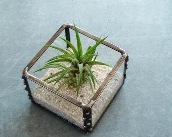 Mini Air Plant Holder, Small Glass Cube Planter, Desk Accessory, Dorm Decor, Under 25