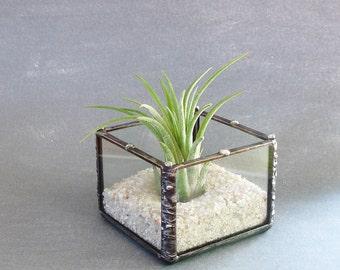 Mini Planter, Desk Accessory, Small Glass Cube, Air Plant Holder, Under 25, Plant Decor