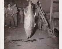 Big Tuna- Fishing Sailors- 1940s Vintage Photograph- Catch of the Day- WW2 Navy Ship- Fish Photo- WWII Picture- 40s Snapshot- Paper Ephemera
