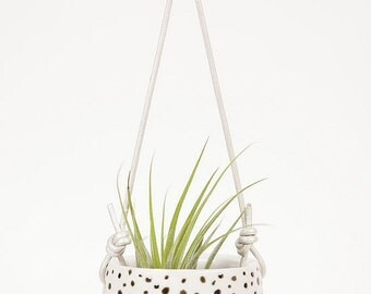 Little hanging planter with polka dots