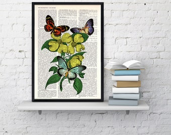 Summer Sale Butterfly  and dogwood collage Book print art Butterflies and Flowers collage Upcycled book page Art Dictionary BFL129