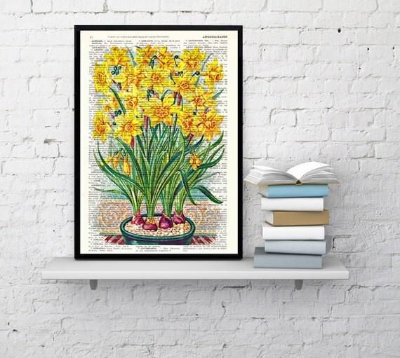 Spring Sale Wall art home decor. Narcisus Yellow flowers - Book print Narcisus Flower Wall hanging floral. Yellow art decor BPBB082
