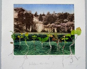 Killerton House. Unique photo etching with mono print wild flowers.
