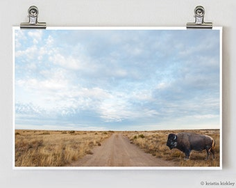Buffalo West Texas Fine Art Photography