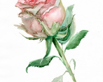 Rose painting, pink flower Fine Art print from original watercolor, nostalgic chic, wedding gift, mother's day