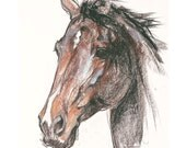 "Horse Art, Thoroughbred, Original, Framed, Pastel Artwork by Anna Noelle Rockwell- ""Bloodlines"""