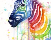 Zebra Watercolor Rainbow Painting Giclée Print, Ode to Fruit Stripes; Colorful Animal Art
