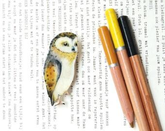 Barn Owl/ hand drawn/