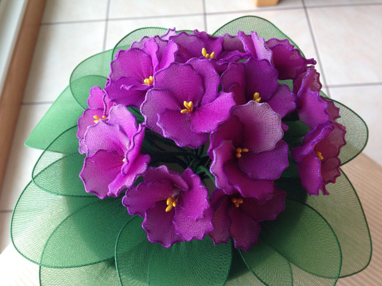 African Violet Plant Nyon Flowers Plant Flower Arrangement