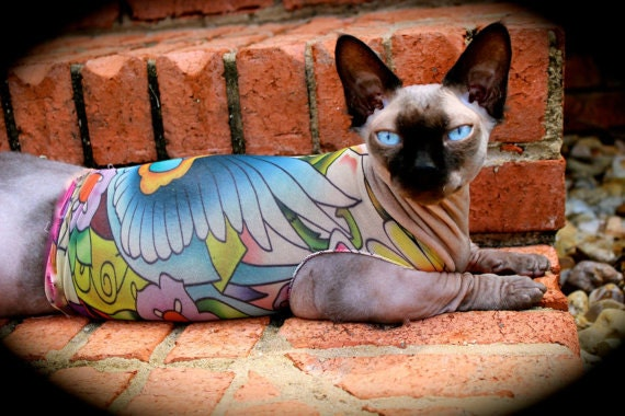 Gifts for pets tattcat lucky 39 s bird tattoo sphynx cat for Hairless cats with tattoos