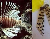 Love Lionfish