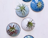 Customized Set of Glazed Wall Planters MADE TO ORDER.  Wall Planters for Air Plants in Ocean tones.