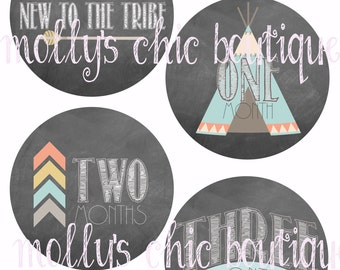 New to the Tribe Monthly bodysuit stickers