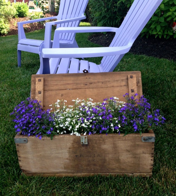 VINTAGE - Old Wood Tool Box Goes Planter - A Delightful RUSTIC Box