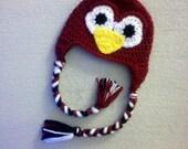 Bundle for Laura: Crochet University of South Carolina Gamecocks Fall College Football Bird Hat