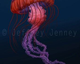 Jellyfish Print - Fine Art Print From An Original Painting  - 8x10 - By Jeffrey Jenney - Ocean Art - Pacific Sea Nettle - Jelly Fish Art