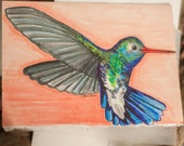 Original Hand Drawn Hummingbird  Blank Card With Envelope