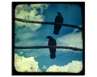 Nature Art, Crows Image, Animals, Blue Sky, Birds, Distressed Print, TTV, Blackbirds, Two Ravens, Rooks, Whimsical - Like Two Peas In A Pod