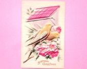 Antique 1910 Charming EDWARDIAN PUFFY BIRDHOUSE Postcard - Raised Image, Tinted