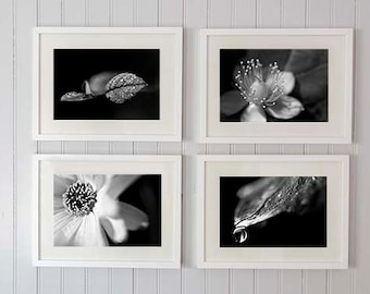 Black and white photography, leaf photography, set of 4 prints 8x10 or 8x12, bathroom art, home decor, french decor, macro wall art