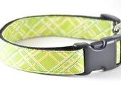 Green Tartan Dog Collar - Preppy Plaid Green Yellow and Aqua Blue Striped Small and Large Dog Collar